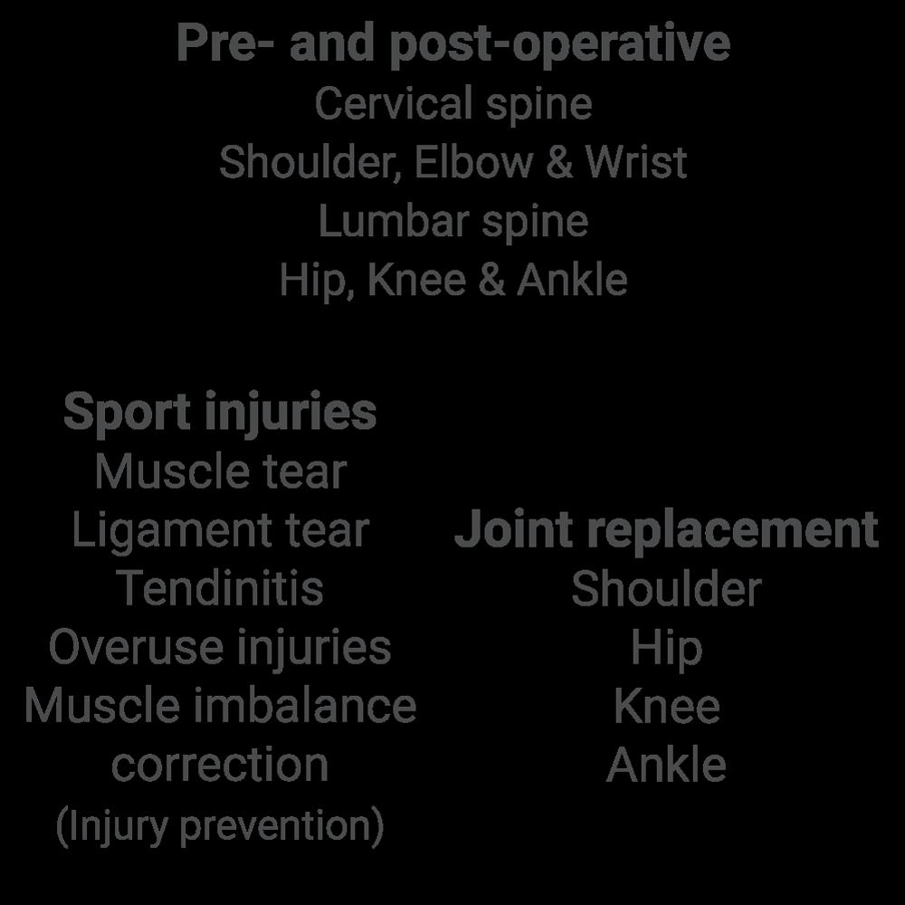 Belinda-Visser-Biokineticist-orthopedic-rehabilitation-text